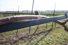 VINOCABLE - Protection des Vignes contre les gelées noires